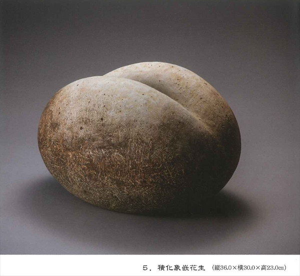 tsukamotogallery08
